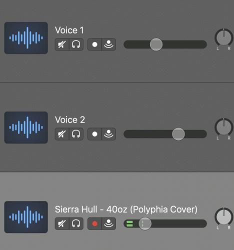 volume controls